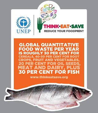 fish infographic